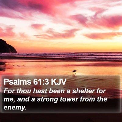 Psalms 61:3 KJV Bible Verse Image