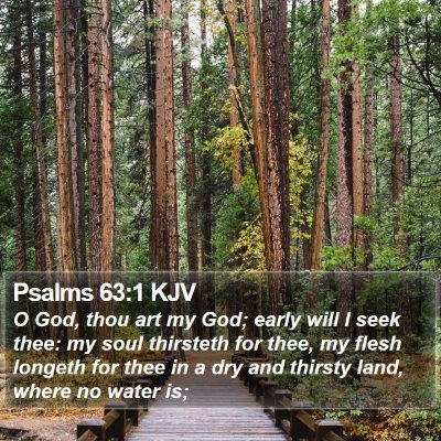 Psalms 63:1 KJV Bible Verse Image