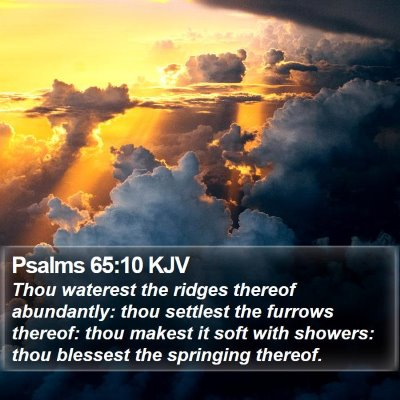 Psalms 65:10 KJV Bible Verse Image