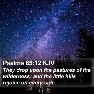 Psalms 65:12 KJV Bible Verse Image