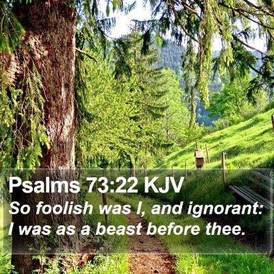 Psalms 73:22 KJV Bible Verse Image