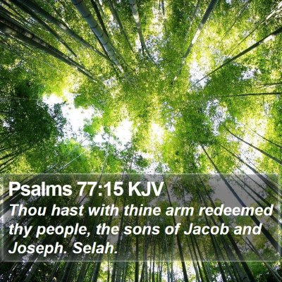 Psalms 77:15 KJV Bible Verse Image