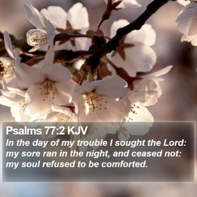Psalms 77:2 KJV Bible Verse Image