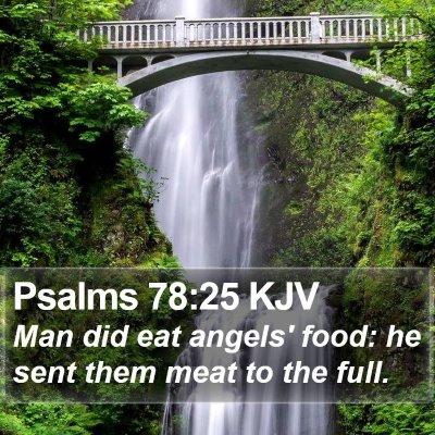 Psalms 78:25 KJV Bible Verse Image