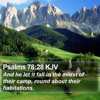 Psalms 78:28 KJV Bible Verse Image