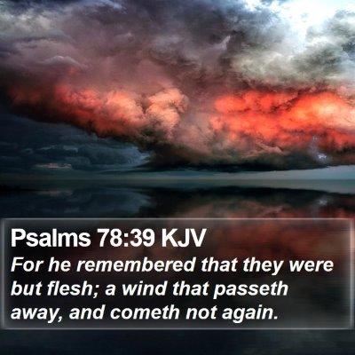 Psalms 78:39 KJV Bible Verse Image