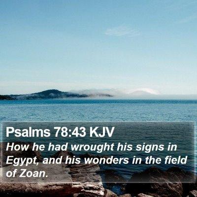 Psalms 78:43 KJV Bible Verse Image