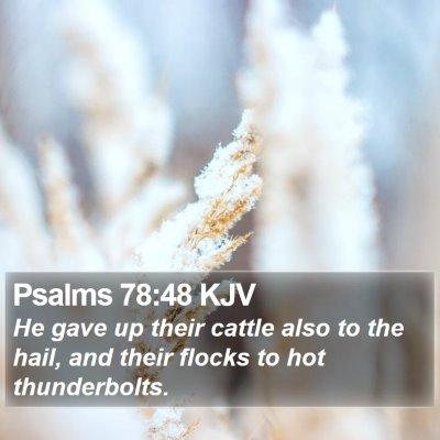 Psalms 78:48 KJV Bible Verse Image