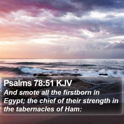 Psalms 78:51 KJV Bible Verse Image