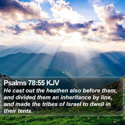 Psalms 78:55 KJV Bible Verse Image