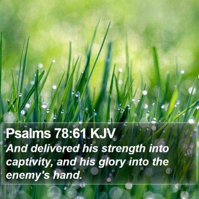 Psalms 78:61 KJV Bible Verse Image