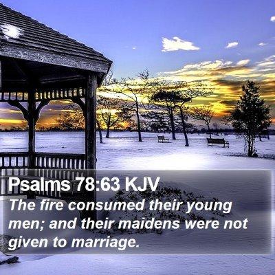 Psalms 78:63 KJV Bible Verse Image