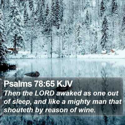 Psalms 78:65 KJV Bible Verse Image