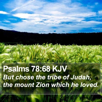 Psalms 78:68 KJV Bible Verse Image