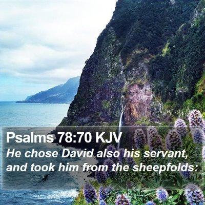 Psalms 78:70 KJV Bible Verse Image