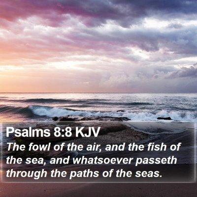 Psalms 8:8 KJV Bible Verse Image