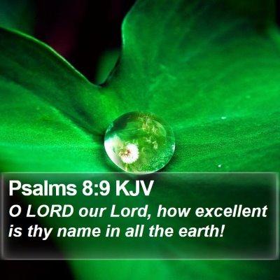 Psalms 8:9 KJV Bible Verse Image