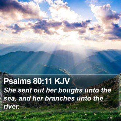 Psalms 80:11 KJV Bible Verse Image