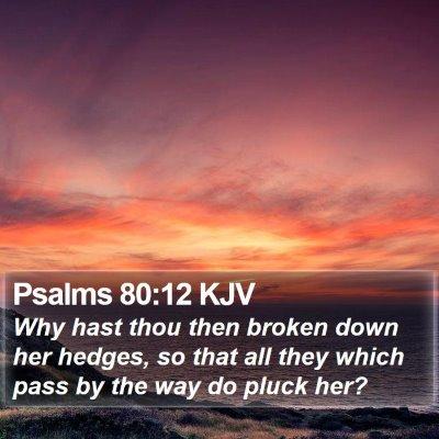 Psalms 80:12 KJV Bible Verse Image