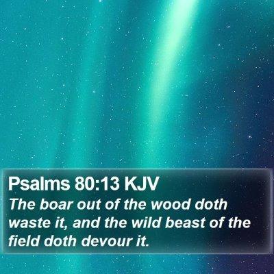 Psalms 80:13 KJV Bible Verse Image
