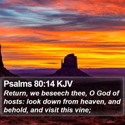 Psalms 80:14 KJV Bible Verse Image