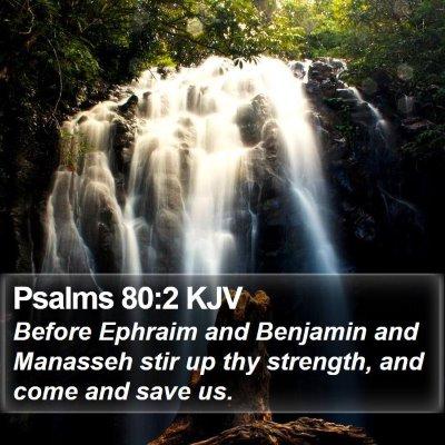 Psalms 80:2 KJV Bible Verse Image