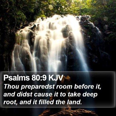 Psalms 80:9 KJV Bible Verse Image