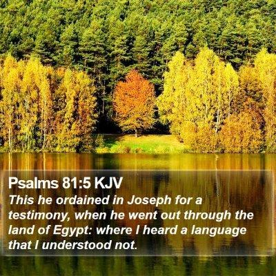 Psalms 81:5 KJV Bible Verse Image