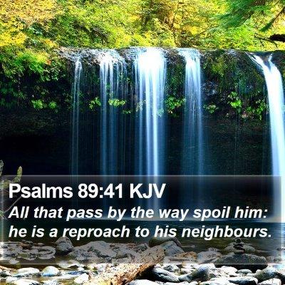 Psalms 89:41 KJV Bible Verse Image