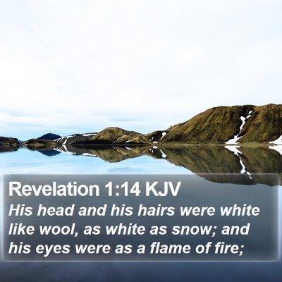 Revelation 1:14 KJV Bible Verse Image