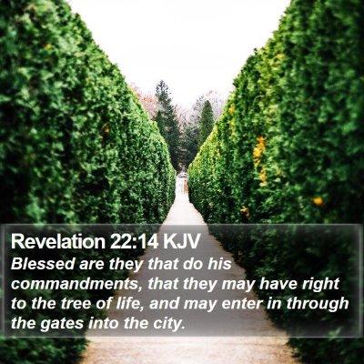 Revelation 22:14 KJV Bible Verse Image