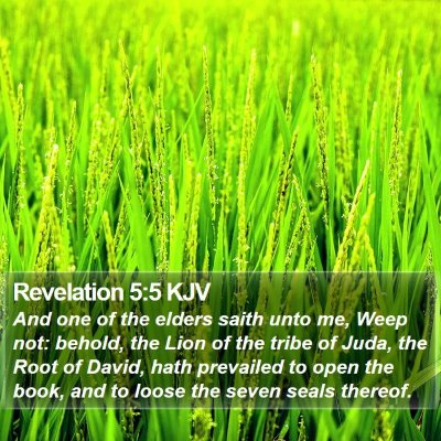 Revelation 5:5 KJV Bible Verse Image