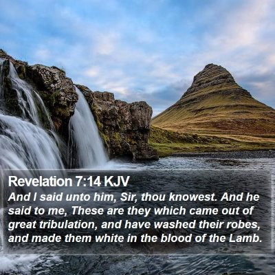 Revelation 7:14 KJV Bible Verse Image