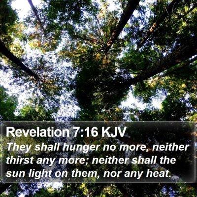 Revelation 7:16 KJV Bible Verse Image