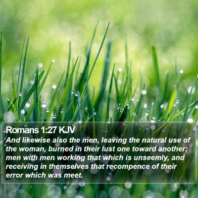 Romans 1:27 KJV Bible Verse Image