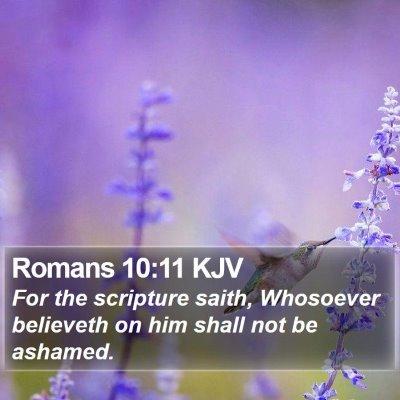Romans 10:11 KJV Bible Verse Image