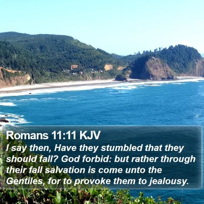 Romans 11:11 KJV Bible Verse Image