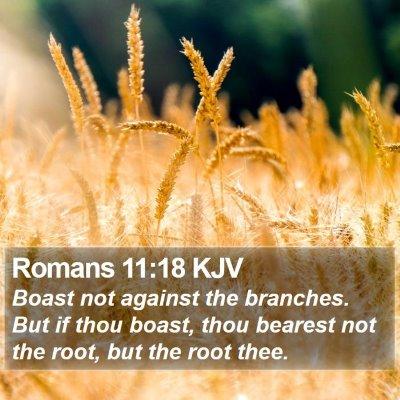 Romans 11:18 KJV Bible Verse Image