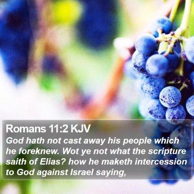 Romans 11:2 KJV Bible Verse Image