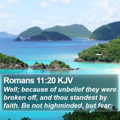 Romans 11:20 KJV Bible Verse Image