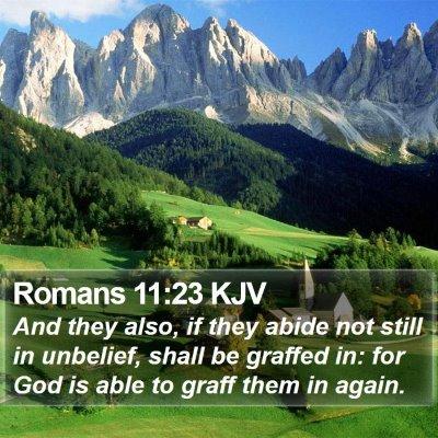 Romans 11:23 KJV Bible Verse Image