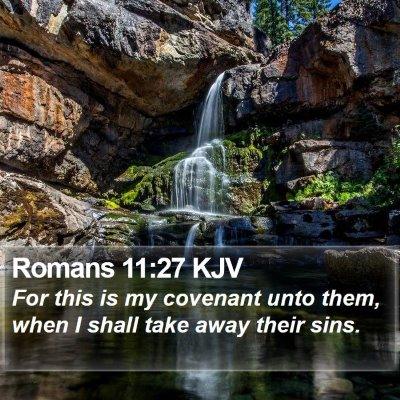 Romans 11:27 KJV Bible Verse Image