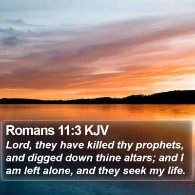 Romans 11:3 KJV Bible Verse Image