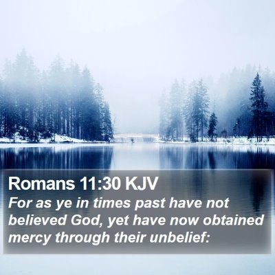 Romans 11:30 KJV Bible Verse Image