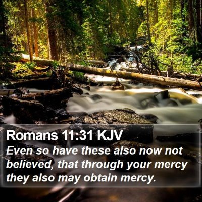 Romans 11:31 KJV Bible Verse Image