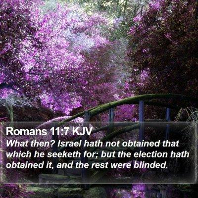 Romans 11:7 KJV Bible Verse Image