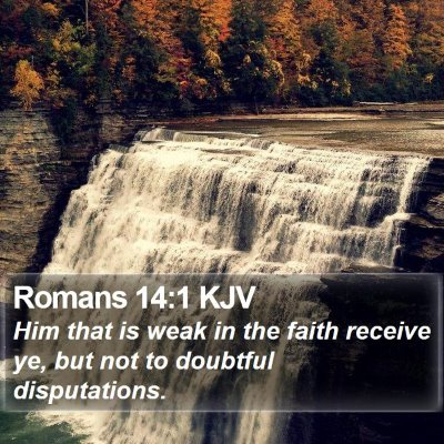 Romans 14:1 KJV Bible Verse Image