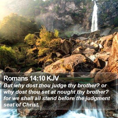 Romans 14:10 KJV Bible Verse Image