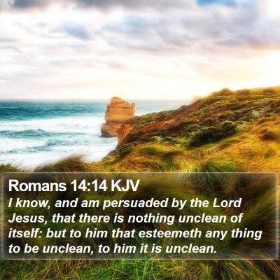Romans 14:14 KJV Bible Verse Image