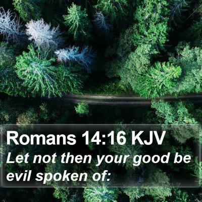 Romans 14:16 KJV Bible Verse Image